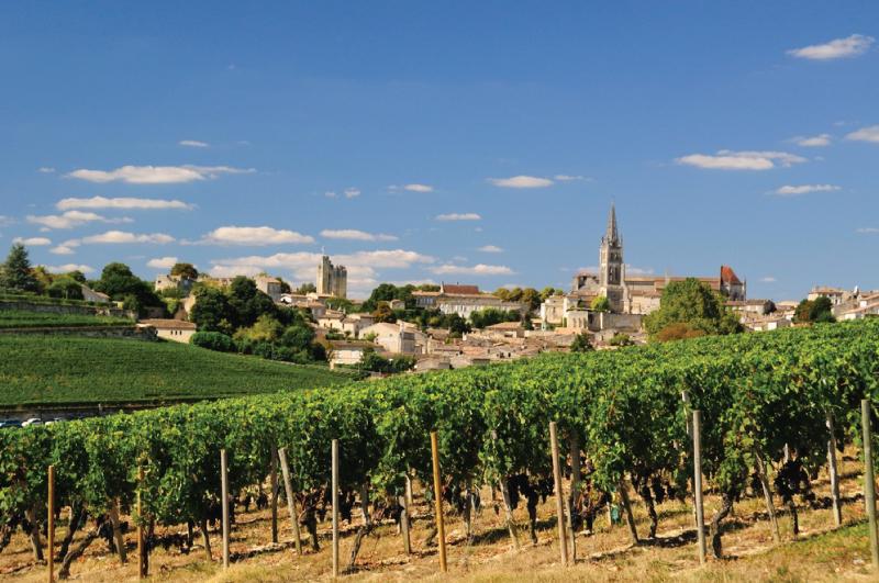 worlds most beautiful vineyards | St. Emilion Vineyard, France