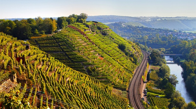 worlds most beautiful vineyards | Baden Wurttemberg Vineyards, Germany