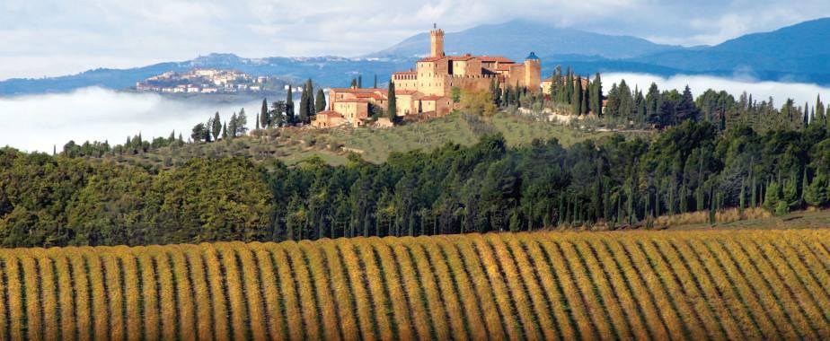 worlds most beautiful vineyards | Brunelloa di Montalcino Vineyards, Tuscany