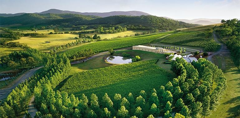 worlds most beautiful vineyards | Yarra Valley Vineyards, Australia